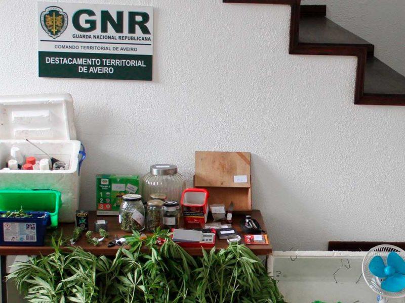 Produtos apreendidos: drogas e equipamentos