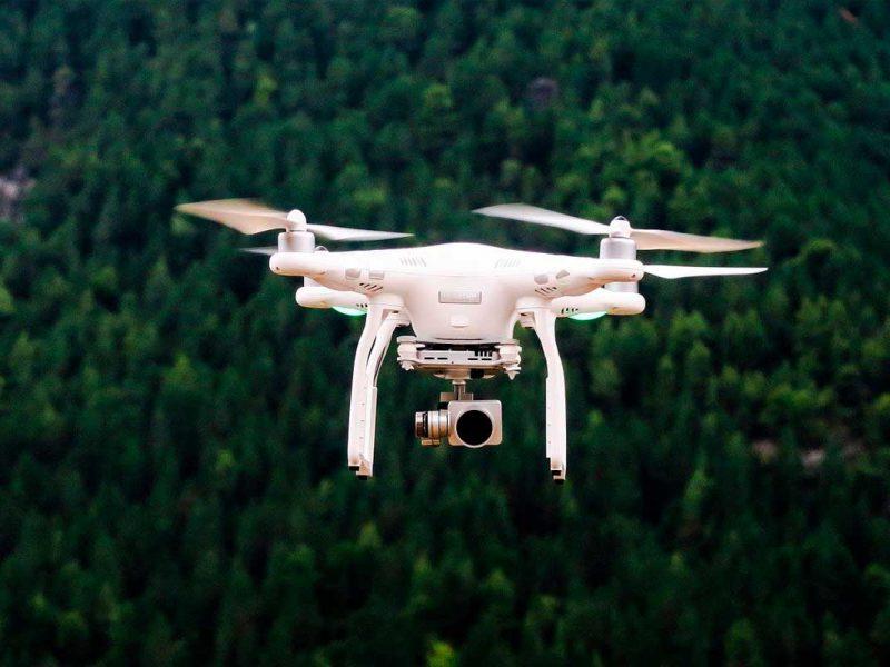 Drone sobre floresta